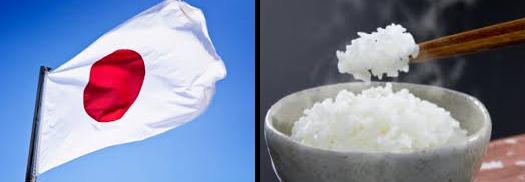 arroz engorda? Japão e China são os maiores consumidores de arroz no mundo.