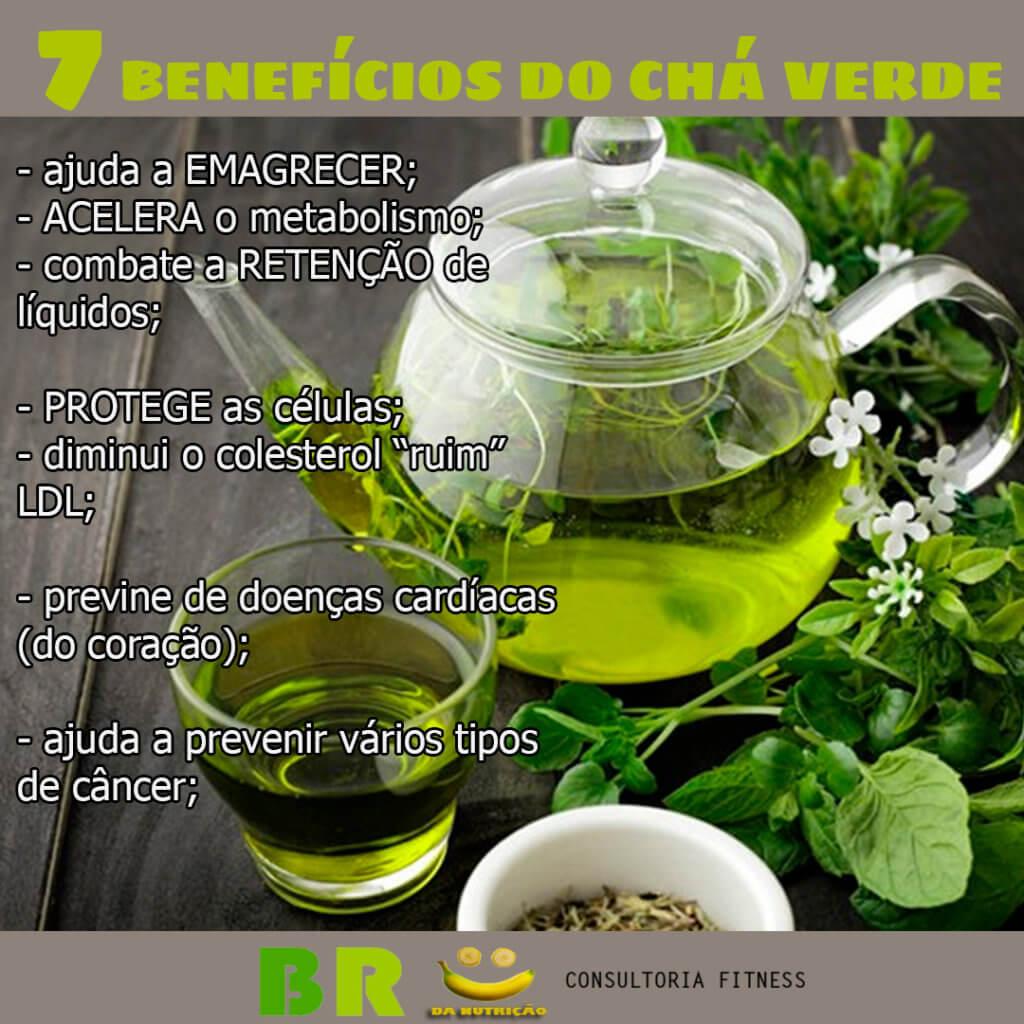 Chá verde combate a dengue