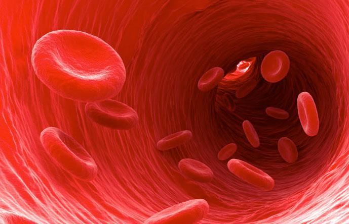 o que é vitamina D o que ela faz no seu corpo, qual seus efeitos