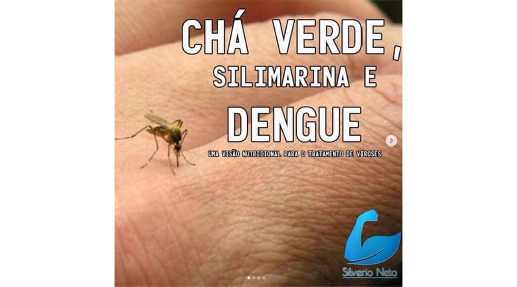 nutrição e dengue - cha verde e silimarina