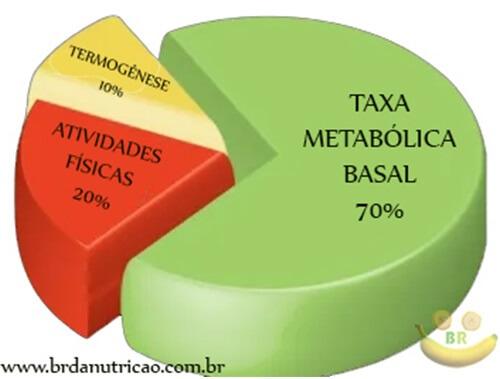 o que é Taxa Metabolica Basal tmb?