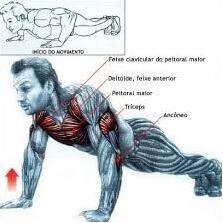 treino funcional em casa: veja qual o musculo trabalhado na hora de realizar uma flexão