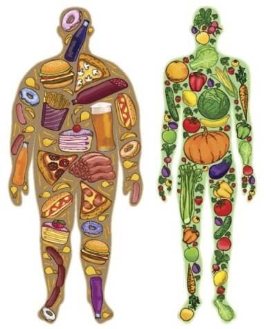 você é o que come é importante para se ter um corpo definido