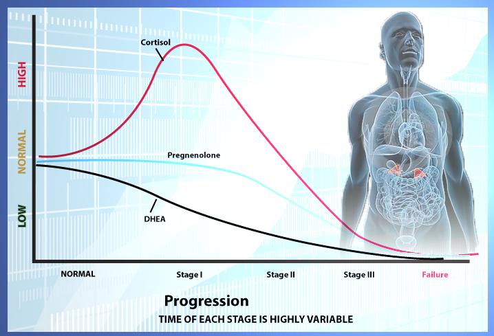 relação do cortisol e DHEA conforme a fadiga adrenal / overtraining evolui