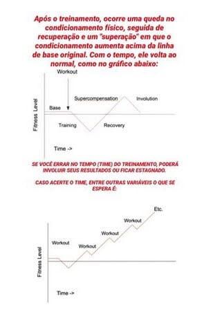 progressão de treino linear a fim de evitar o overtraining