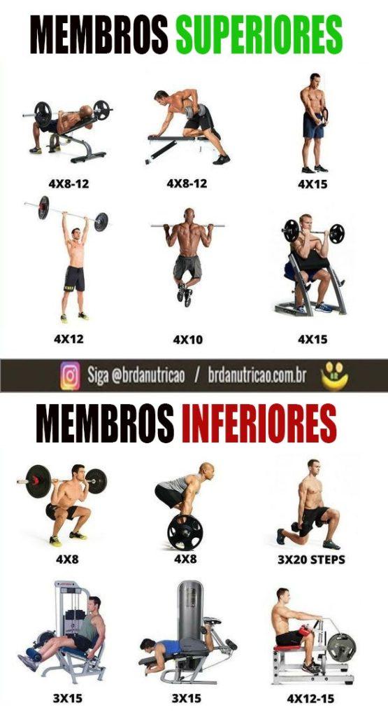 programa de treino de musculação para perder peso