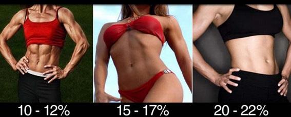 percentual de gordura feminino