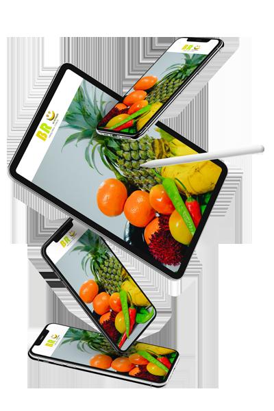 Plano Alimentar 1 BR da Nutrição | Consultoria Fitness Online