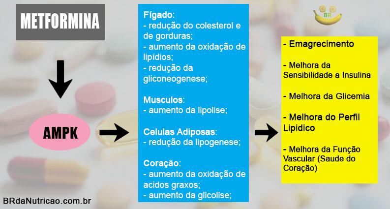 Metformina Emagrece? Para Que Serve? 2 BR da Nutrição   Consultoria Fitness Online
