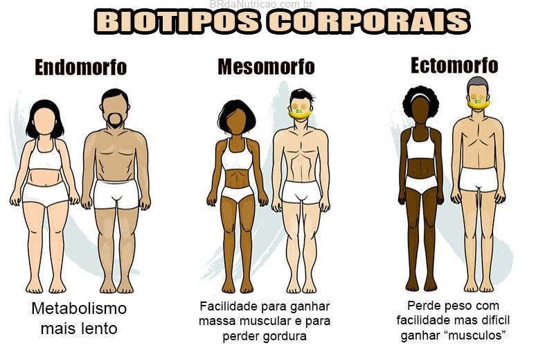 biotipo corporal