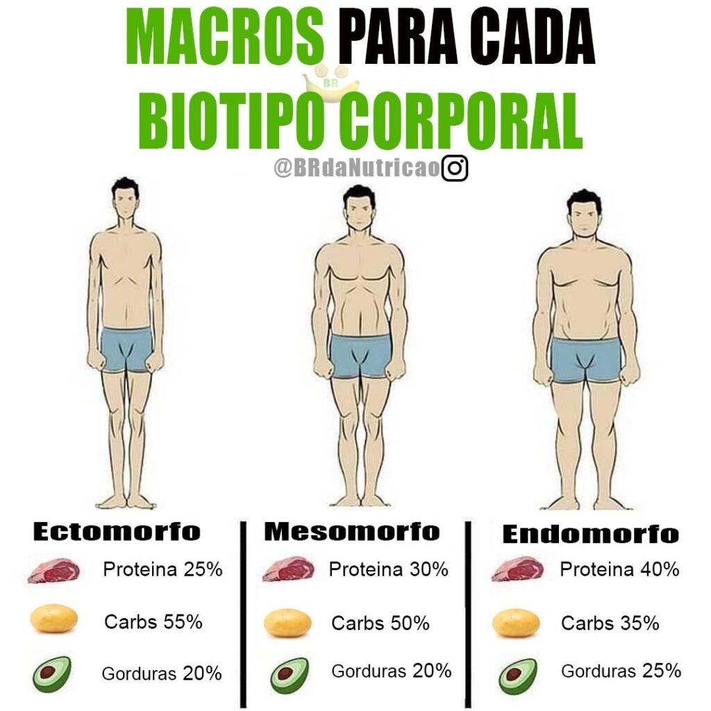 macros para cada biotipo corporal como se alimentar